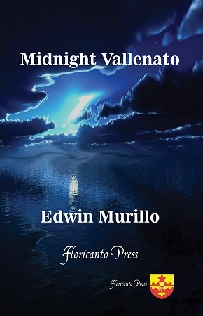 Midnight Vallenato. By Edwin Murillo.